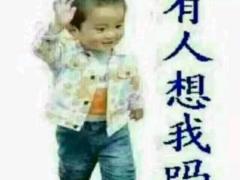 宠物公司直播间_宠物公司视频全集 - China直播视频