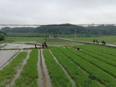 绿之洲直播间_绿之洲视频全集 - China直播视频